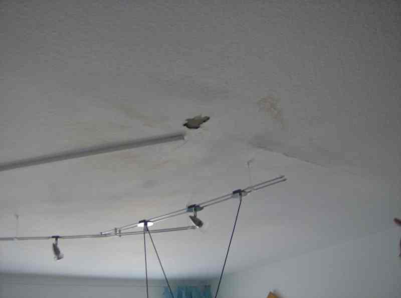 wasserschaden durch undichte silikonfuge in mannheim verstopfung an duschwanne in malsch. Black Bedroom Furniture Sets. Home Design Ideas
